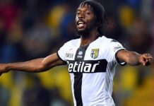 Gervinho's late goal against Napoli secures the win